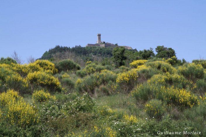 photo-de-toscane-8691